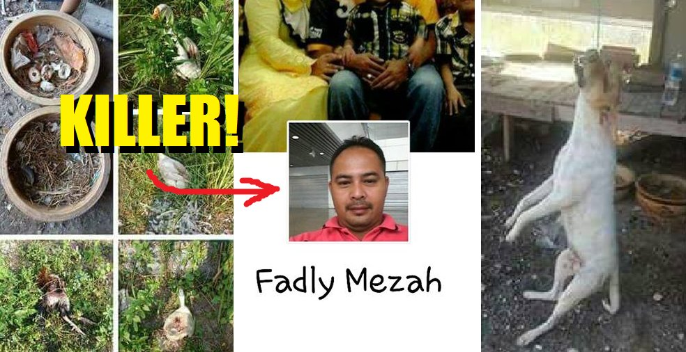 Sick Malaysian Hangs Dog To Death And Posts The Act on Facebook - World Of Buzz