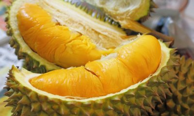 Durian is Haram?! Readers Fall for Satirical Post - World Of Buzz