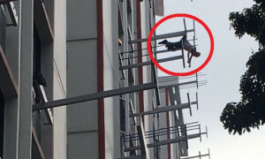Man Survives Eight Storey Jump After His Clothes Snagged Onto Rack, Dangles Mid-Air - World Of Buzz