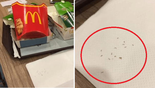 Singaporean Woman Discovers Worms Wriggling Around Her Fillet-O-Fish Box - World Of Buzz 1