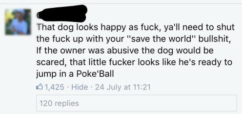 Taking it a bit too far, Pokemon fan turns their dog into Pikachu - World Of Buzz 5
