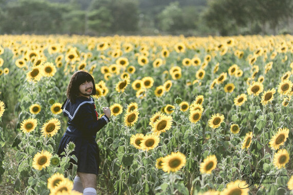 'Japanese Girl in Sunflower Field' Has The Internet Is Going Wild and It's Hilariously Amazing! - World Of Buzz 2