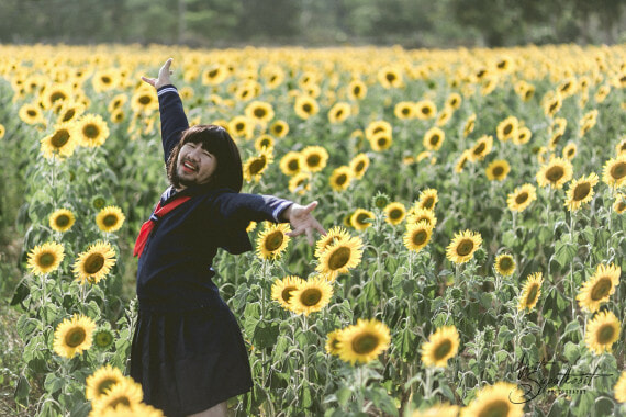 'Japanese Girl in Sunflower Field' Has The Internet Is Going Wild and It's Hilariously Amazing! - World Of Buzz 3