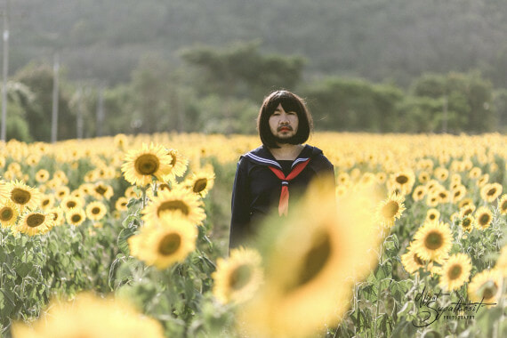 'Japanese Girl in Sunflower Field' Has The Internet Is Going Wild and It's Hilariously Amazing! - World Of Buzz 4