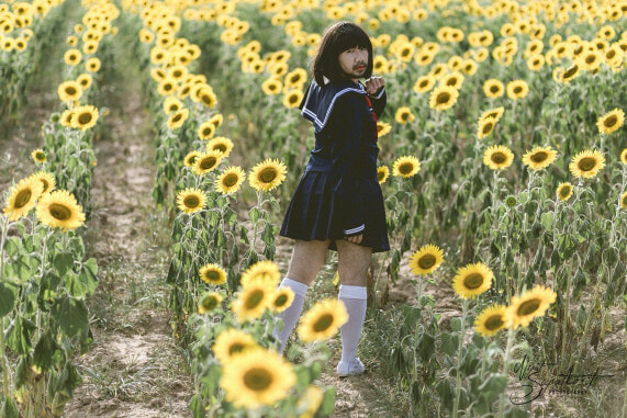 'Japanese Girl in Sunflower Field' Has The Internet Is Going Wild and It's Hilariously Amazing! - World Of Buzz