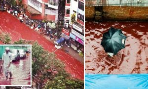 Disgusting River Of Blood Flows Through Dhaka Streets, It Will Make You Want To Puke - World Of Buzz 3