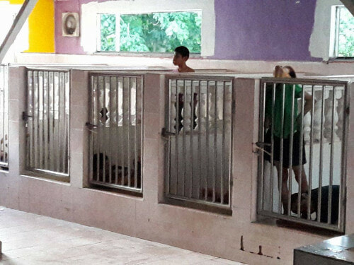 Malaysian Girl Shockingly Finds Disabled Kids Locked Up in Cages - World Of Buzz