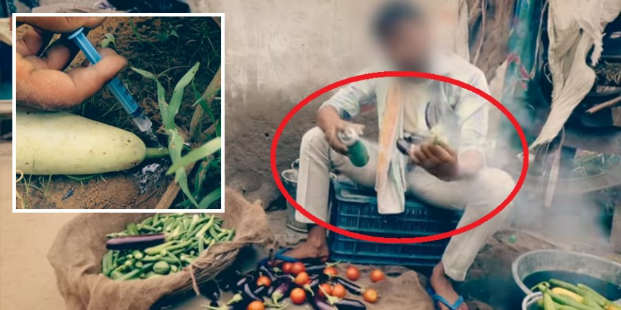 Outrageous Video Shows How Indian Farmers Dye And Inject Vegetables To Make Them Look 'Bigger And Fresher' - World Of Buzz 7