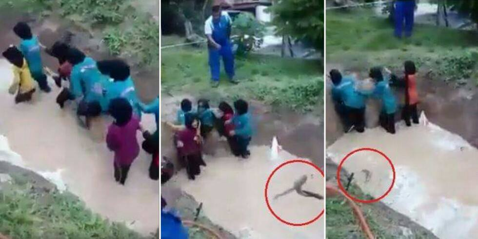 ViPrimary School Girls Forced To Swim Through Snake Infested Pond As Part Of Camp Acitvity - World Of Buzz