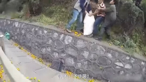 Chinese Man Cries As Villagers Steal His Oranges After His Lorry Overturned. - World Of Buzz 1