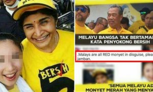 The Shocking Truth Behind The Chinese Girl Who Called Malays 'RED Monyet' - World Of Buzz 16