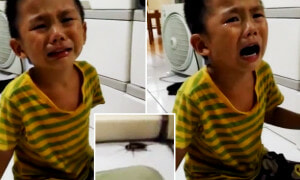 """You Want To Kill Me Too?!"" Innocent Child Asks His Mother After She Murdered A Cockroach - World Of Buzz 7"