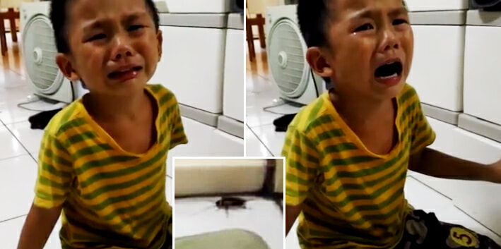"""""""You Want To Kill Me Too?!"""" Innocent Child Asks His Mother After She Murdered A Cockroach - World Of Buzz 7"""
