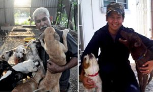 Malaysian Mufti Explains that Muslims Should Help Animals in Need, Even Dogs - World Of Buzz 4