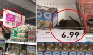 Massive Rat Spotted Just 'Lounging' on Top Shelf in 1 Utama's Aeon - World Of Buzz 4