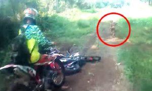 Mysterious Figure Spotted By Biker Spark Huge Debate. - World Of Buzz 3