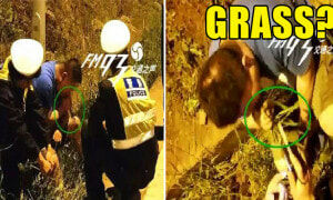 Drunk Chinese Man Tries to Sober Up by Eating Grass from Roadside - World Of Buzz