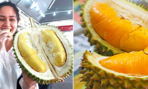 6 Easy Tips For Malaysians to Identify Musang King Durian - World Of Buzz