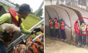 6 Indonesian Workers Stranded in Storm Tunnel Risk Their Lives to Save a Cat - World Of Buzz 1