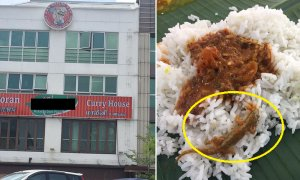 Facebook User Finds a Whole Lizard in Food at Puchong Banana Leaf Restaurant - World Of Buzz 4