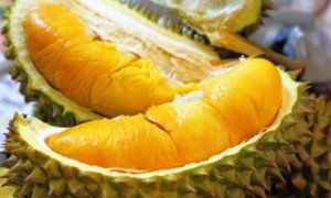 "Malaysia Gifts 43 Fresh Durians to China as Part of ""Durian Diplomacy"" - World Of Buzz"