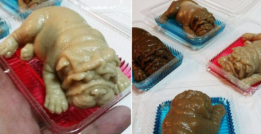 Thai Dessert Shop Creates Viral Puppy-Shaped Puddings, Causes Netizens to Have Mixed Reactions - World Of Buzz 6