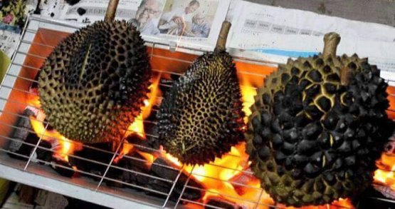 Tips in Identifying Musang King - World Of Buzz 9