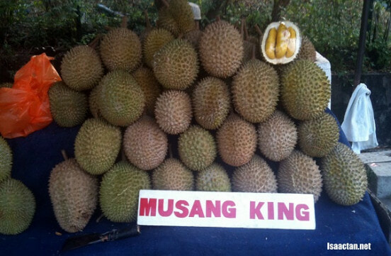 Tips in Identifying Musang King - World Of Buzz 1