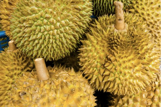 Tips in Identifying Musang King - World Of Buzz 3