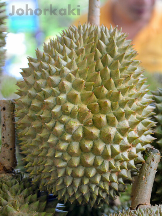 Tips in Identifying Musang King - World Of Buzz