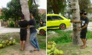 Villagers Catch Two Men Stealing Coconuts, Ties Them to Tree as Punishment - World Of Buzz 4