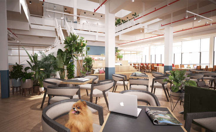 8 Coolest Co-Working Spaces in Klang Valley You NEED to Check Out - WORLD OF BUZZ 3