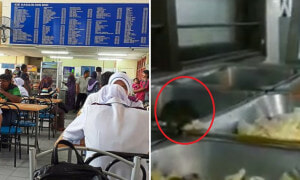 Video of Rat Eating Food Allegedly in Klang Hospital Cafeteria Upsets Netizens - World Of Buzz 5