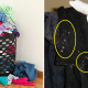 Study Shows Bed Bugs are Attracted to Dirty Laundry, Here's How to Avoid Them - WORLD OF BUZZ