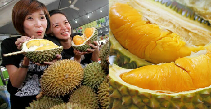 Malaysians Can Enjoy Cheaper Musang King Durian in November, Here's Why - WORLD OF BUZZ
