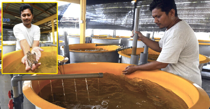 This M'sian Fisherman Was Once Labeled 'crazy' For Farming Fish, Now He's A Millionaire - World Of Buzz