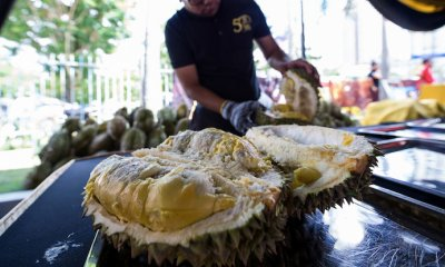 Malaysia's Durians are The Best in The World, Chinese VIP Says - WORLD OF BUZZ 4