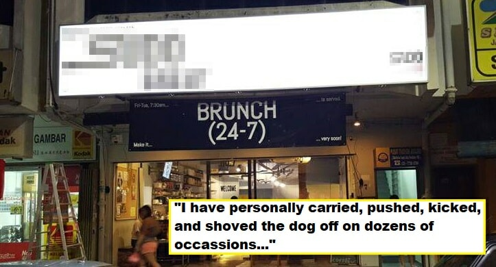 M'sian Cafe Under Fire After Managing Partner Admitted to Abusing Dog For Years - WORLD OF BUZZ 2