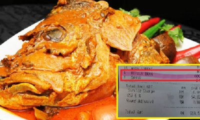 M'sian Shocked At Being Charged RM600 for Fish Head Curry in Famous Mamak Chain - WORLD OF BUZZ 4