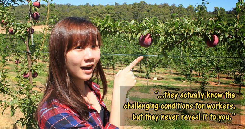 This Malaysian Went Undercover to Expose Modern Slavery in Australian Fruit-Picking Farms - WORLD OF BUZZ