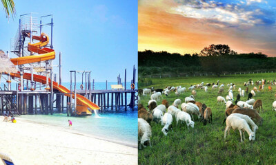 X of Johor's Best Kept Secrets That Malaysians Should Definitely Visit - WORLD OF BUZZ 9