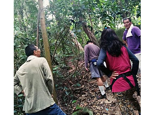M'sian Warns Other Hikers After Finding Over 10-Foot Long Poisonous King Cobra on Trail - WORLD OF BUZZ