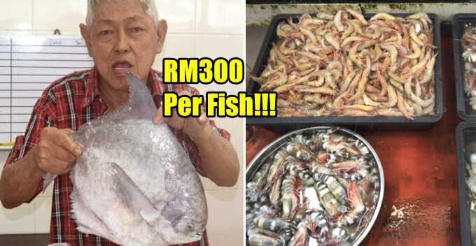 M'sians to Pay for Expensive Seafood During 2018 CNY, Here's the Estimated Price Range - WORLD OF BUZZ