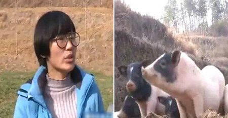 This Millennial Balik Kampung To Rear Pigs, Now Earns Rm620,000 Per Year - World Of Buzz