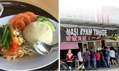 This M'sian Hawker Sells Bean Sprouts Chicken Rice For RM1.30 For Struggling People - WORLD OF BUZZ 3