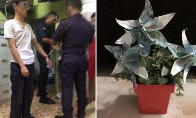 Woman Hires Friends to Service Air Con, Ends Up Stealing Her Money Flowers Twice - WORLD OF BUZZ