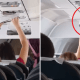 Woman Takes Out Underwear to Dry On Plane, Leaves Passengers Stunned - WORLD OF BUZZ 3