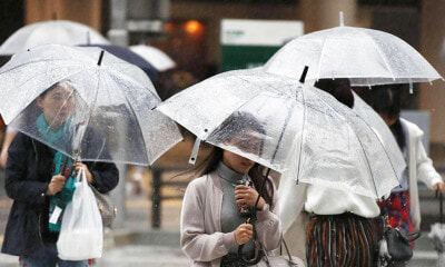 Does Covering Your Head From The Rain Really Prevent You From Getting Sick? - WORLD OF BUZZ 7