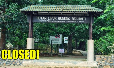 Johor Park Closed After Two Young Children Infected with Rat Urine Disease - WORLD OF BUZZ 5