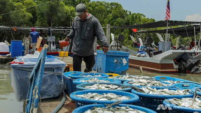 Fishermen in Kedah Unhappy Despite Government Handouts & Plan to Vote For Opposition - WORLD OF BUZZ 3